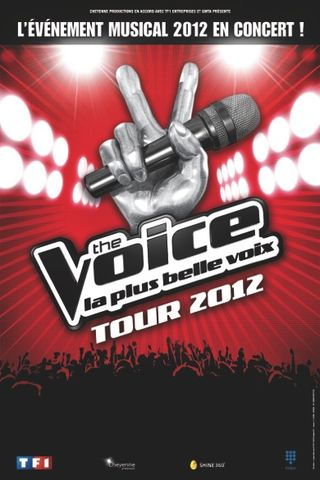 Affiche_TheVoiceTour2012